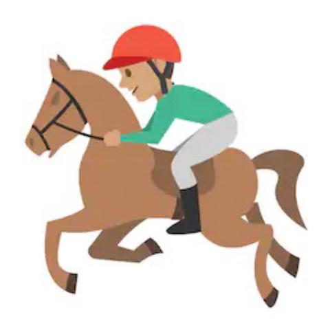 MMU Equestrian Team