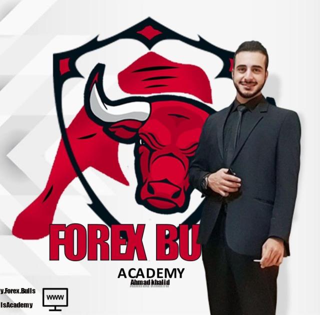 Forex Bulls Academy
